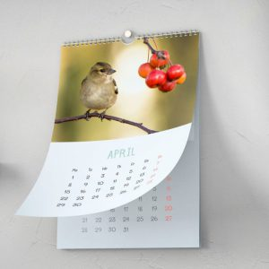 How to Choose Right Paper for Your Business Calendar?